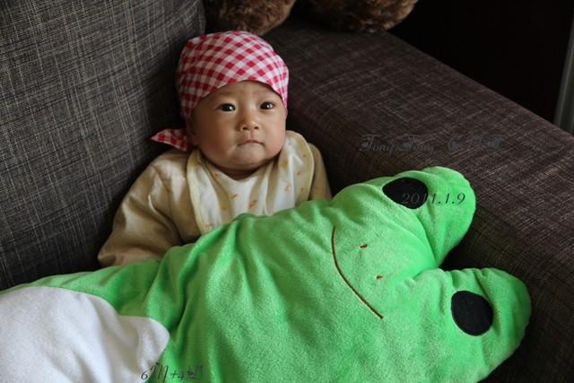 物抱枕哟   青蛙王子被妞蹂躏   撕扯 啃咬一翻