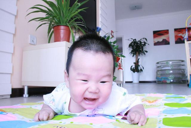 成长快乐 宝宝满八个月图片