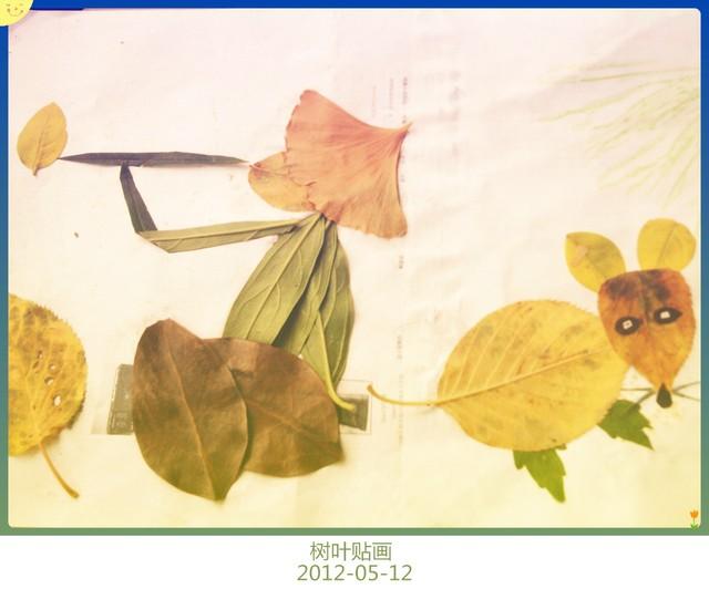 银杏叶拼贴画_树叶贴画_在树皮印画初尝试 和贴纸也能DIY 之后,发现树叶_宝宝树